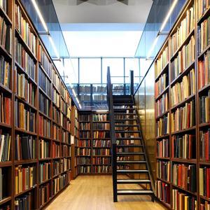 Библиотеки Дубков