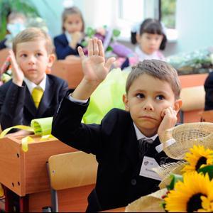 Школы Дубков